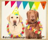 Doggo, Θεσσαλονικείς,Doggo, thessalonikeis