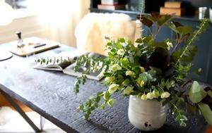 5 φυτά εσωτερικού χώρου που βελτιώνουν την υγεία σας