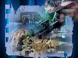 Βόμβα, ΣτΕ, 2012 - Δείτε,vomva, ste, 2012 - deite