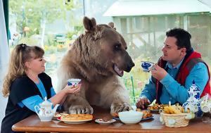 Αρκούδα, arkouda
