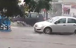 Ποτάμια, Θεσσαλονίκη, Αμφίβια ΙΧ, potamia, thessaloniki, amfivia ich