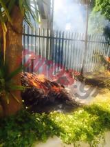 Φωτιά, Μαρούσι - ΤΩΡΑ - ΦΩΤΟ - ΒΙΝΤΕΟ,fotia, marousi - tora - foto - vinteo