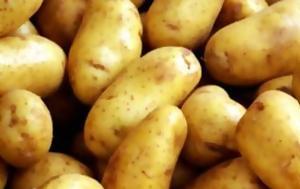 Προσοχή - ΠΑΤΑΤΑ, ΚΙΝΔΥΝΟΥΣ, prosochi - patata, kindynous