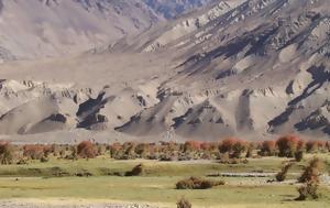 -Ζουν, Αφγανιστάν, Ταλιμπάν [εικόνες], -zoun, afganistan, taliban [eikones]
