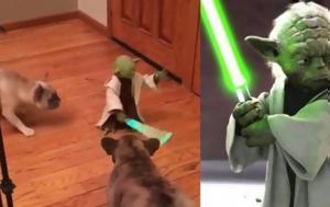 Ο… Yoda, Video, o… Yoda, Video