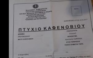 Πτυχίο Καφενόβιουampquot, Ελλάδα, ptychio kafenoviouampquot, ellada