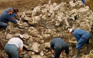 Εφορεία Αρχαιοτήτων Κεφαλληνίας, eforeia archaiotiton kefallinias