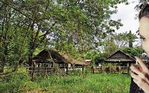 Τζολί, Καμπότζη, tzoli, kabotzi