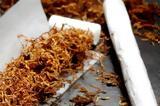 Κομοτηνή, Καπνοκαλλιέργεια, Καρυδιά, Ροδόπης,komotini, kapnokalliergeia, karydia, rodopis