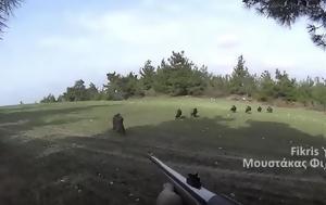 Γουρούνα, VIDEO, gourouna, VIDEO