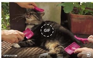 Facebook, Ετοιμαστείτε, GIFs, Facebook, etoimasteite, GIFs