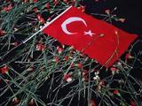 Κινητικότητα Τούρκων, Ελλάδα,kinitikotita tourkon, ellada