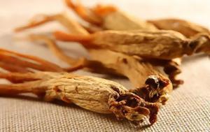 H ρίζα της ζωής: Oι αρχαίοι το θεωρούσαν φάρμακο για όλες τις ασθένειες!