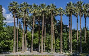 Μυστήριο, Εθνικό Κήπο, mystirio, ethniko kipo