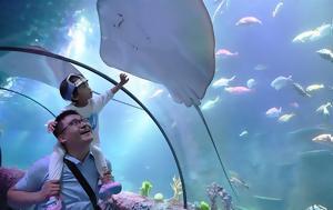 Άνοιξε, Sea Life, Κίνα, anoixe, Sea Life, kina