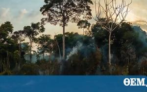 SOS, Αμαζόνιο, Πώς, SOS, amazonio, pos