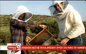 Μέλι, – Αντίδοτο, meli, – antidoto