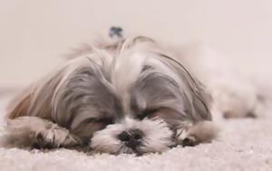 8 κόλπα για να κοιμηθείς πιο εύκολα
