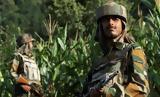 Εμπόλεμη, Κασμίρ - Τουλάχιστον,ebolemi, kasmir - toulachiston