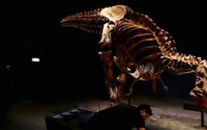 Έρευνα, Τυραννόσαυρος Ρεξ, erevna, tyrannosavros rex