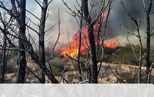 Μεγάλη, Λαγονήσι -, - Κάηκε, megali, lagonisi -, - kaike