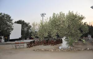 Κινηματογραφικό, Αίγινας, 31 Αυγούστου – Δείτε, kinimatografiko, aiginas, 31 avgoustou – deite