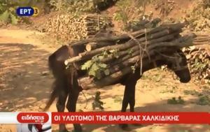 Βαρβάρας Χαλκιδικής, varvaras chalkidikis