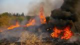 Μεγάλη, Κάλαμο Αττικής – Καίγονται,megali, kalamo attikis – kaigontai