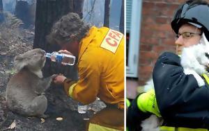 15 φωτογραφίες γενναίων πυροσβεστών που ρίσκαραν την ζωή τους για να σώσουν ζώα.
