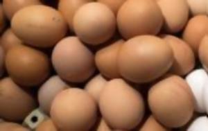 Σε επιφυλακή μετά τα κρούσματα μολυσμένων αβγών στην εε οι έλληνες αβγοπαραγωγοί