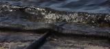 Ελληνικός Νηογνώμων ΑΕ, Αγία Ζώνη ΙΙ,ellinikos niognomon ae, agia zoni ii