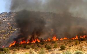 Πυρκαγιά, Πρέσπες, Αλβανία, pyrkagia, prespes, alvania
