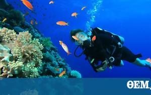 Diving, South Aegean