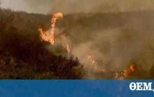Πυρκαγιά, Έξαρχος, Αταλάντη, pyrkagia, exarchos, atalanti