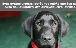 Ήθελε, Σκύλο, Καταφύγιο, Γράμμα, Προηγούμενου Ιδιοκτήτη, Αυτό, Πάντα, ithele, skylo, katafygio, gramma, proigoumenou idioktiti, afto, panta