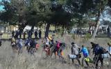 Μετεγκατάσταση 234, Ελλάδα, Γαλλία,metegkatastasi 234, ellada, gallia