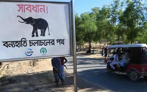 Πρόσφυγες Ροχίνγκια, Μπαγκλαντές – Τέσσερις, prosfyges rochingkia, bagklantes – tesseris