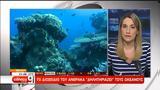 Το διοξείδιο του άνθρακα «δηλητηριάζει» τους ωκεανούς (video),
