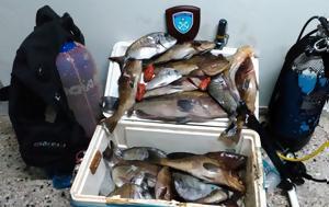Ψάρευε, Εύβοια, psareve, evvoia