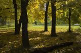 Πάρκο, Αθηναίους,parko, athinaious