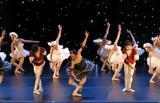3ο Πανελλήνιο Πρωτάθλημα Κλασικού, Σύγχρονου Χορού,3o panellinio protathlima klasikou, sygchronou chorou