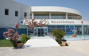 Κρήτη | Κλειστό, Παρασκευή, Ενυδρείο, kriti | kleisto, paraskevi, enydreio