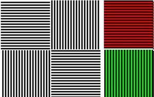 Η οπτική ψευδαίσθηση που μπορεί να σας «κάψει τον εγκέφαλο» και να προκαλέσει σοβαρά προβλήματα στην όραση