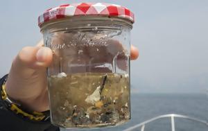 Τα μικροπλαστικά μολύνουν ακόμα και τις πιο απομακρυσμένες θάλασσες