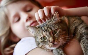 Οι γάτες (όχι οι σκύλοι) σώζουν τα παιδιά από άσθμα