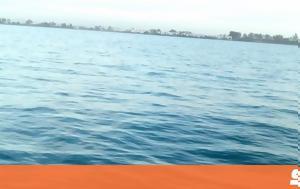 Ψάρευαν, Ιόνιο, psarevan, ionio