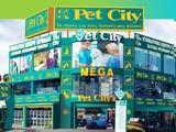 Συνεργασία Forthnet - Pet City,synergasia Forthnet - Pet City