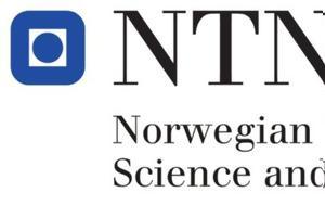 Μεταπτυχιακές, Norwegian University, Science, Technology, metaptychiakes, Norwegian University, Science, Technology