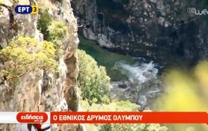 Εθνικός Δρυμός Ολύμπου, ethnikos drymos olybou