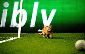 Μπεσίκτας, UEFA, besiktas, UEFA